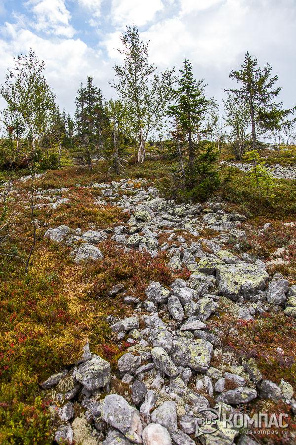 Камни на склонах плато Мань-Пупу-Нёр