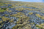 Каменные тропинки на перевале