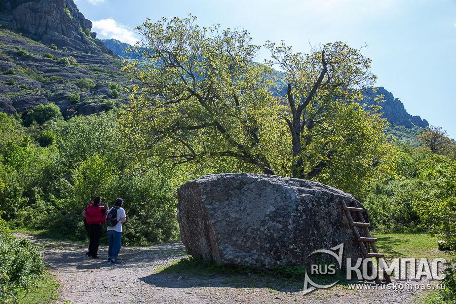 «Камень Варлей» и «Никулинский орех» на месте съемок фильма «Кавказская пленница»