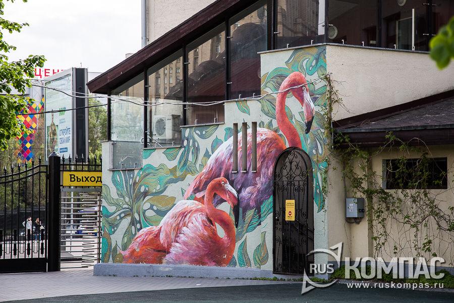 На выходе граффити «Фламинго»