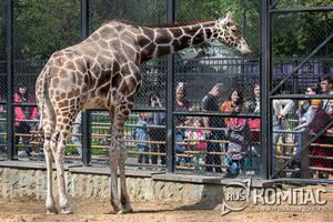Московский зоопарк (Старая территория)