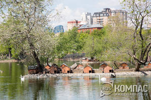 Птичьи домики на пруду