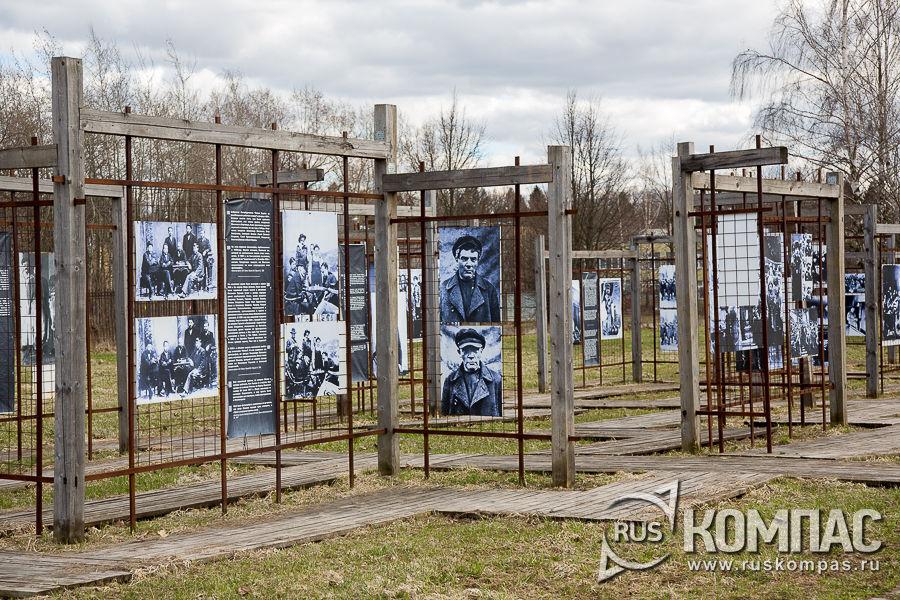 Фотографии Ульянова-Ленина в разные годы
