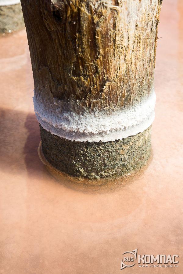 Соляные наросты на деревянных столбах, когда-то входивших в состав плотин
