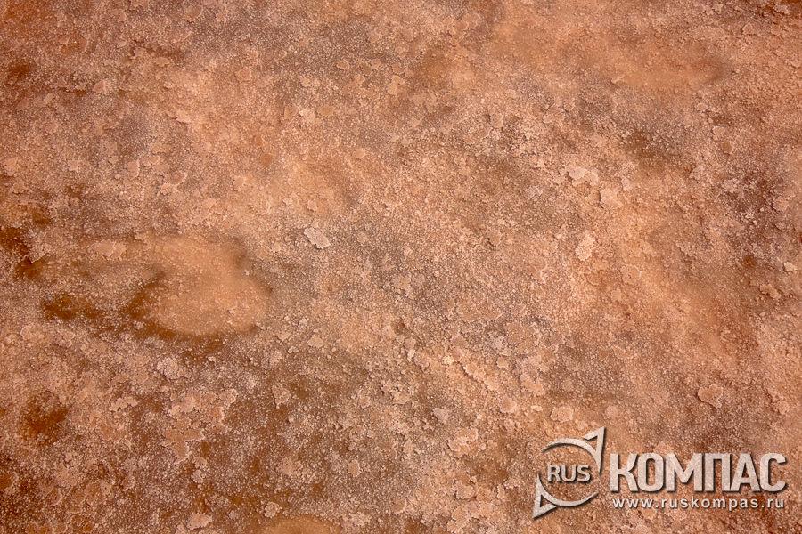 Соляное дно озера Сасык