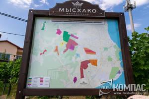 План виноградников винзавода «Мысхако»