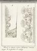 Образец утвержденного указом Николая I  шитья по рукавам и по вороту парадного придворного платья