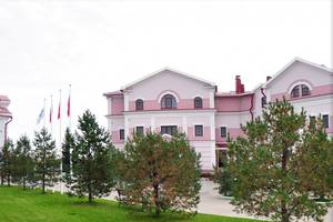 гостиница Николаевский посад