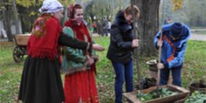 В Новгороде состоится капустный фестиваль