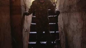 В Великих Луках активисты хотят восстановить бункер Фон Засса, как памятник военной истории