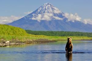 Лучшее время для путешествия на Камчатку - весна