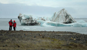 Находки и открытия в Русской Арктике