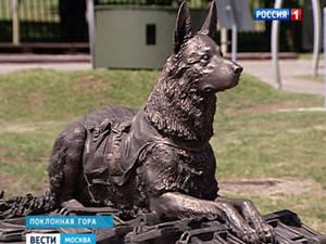 Памятник фронтовой собаке открыли в Москве